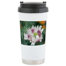 Poppy (Papaver sp.) - Travel Mug