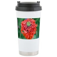 Poppy (Papaver sp.) - Travel Coffee Mug