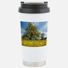 Shell Creek, California - Travel Mug
