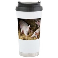 Sleeping pigs - Travel Coffee Mug