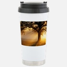 Oak tree at sunrise - Travel Mug