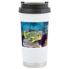 Yellow-ribbon sweetlips - Travel Mug