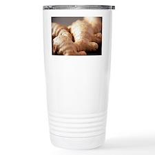Ginger root - Travel Mug