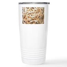Mung bean sprouts - Thermos Mug