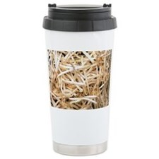 Mung bean sprouts - Travel Coffee Mug