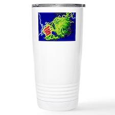 Legionella bacteria - Travel Mug