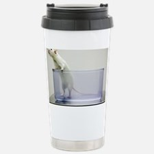 Sprague-Dawley laboratory rat - Travel Mug