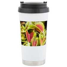 Venus flytrap (Dionaea muscipula) - Travel Mug