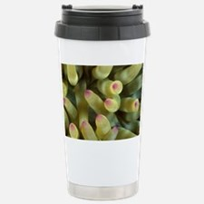 Anemone tentacles - Travel Mug