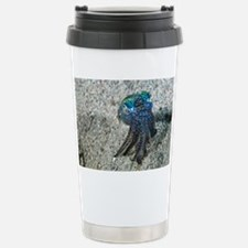 Bobtail squid on the seabed - Stainless Steel Trav