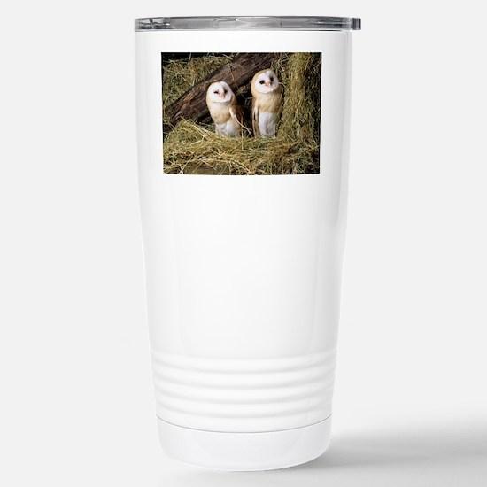 Barn owls - Stainless Steel Travel Mug