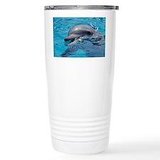 Bottlenose dolphin - Travel Mug