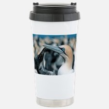 Cape gannets - Stainless Steel Travel Mug