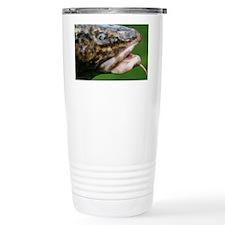 Burbot (Lota lota) - Travel Mug