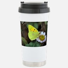 Clouded yellow butterfly - Stainless Steel Travel