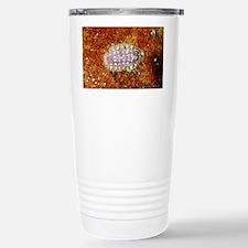 Chiton shell - Travel Mug