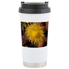 Coral polyp - Travel Mug