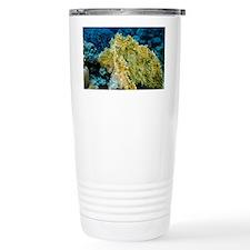 Fire coral - Travel Mug