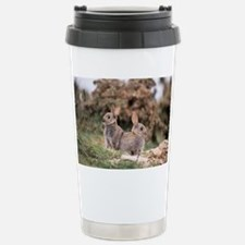 European rabbits - Travel Mug