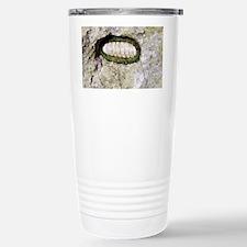 Giant chiton - Stainless Steel Travel Mug