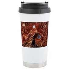 Giant Pacific octopus - Travel Mug
