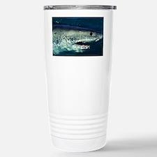 Great white shark - Stainless Steel Travel Mug