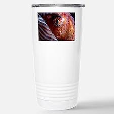 Greater argonaut eye - Stainless Steel Travel Mug