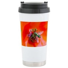 Hoverfly - Travel Coffee Mug
