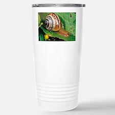 Land snail - Stainless Steel Travel Mug