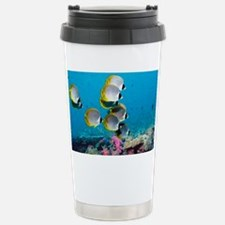 Panda butterflyfish - Stainless Steel Travel Mug