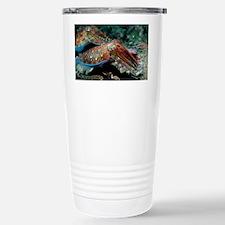 Pharaoh cuttlefish - Stainless Steel Travel Mug