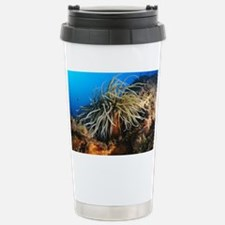 Snakelocks anemone - Travel Mug