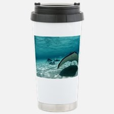 Southern stingray - Stainless Steel Travel Mug