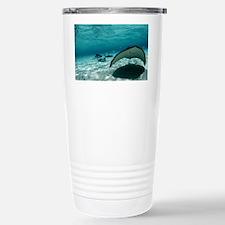 Southern stingray - Travel Mug
