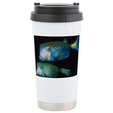 Whitespotted boxfish - Travel Mug
