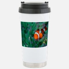 Western clown anemonefish - Travel Mug