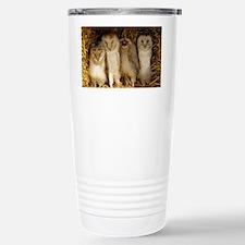 Young barn owls - Stainless Steel Travel Mug