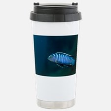Zebra cichlid - Stainless Steel Travel Mug