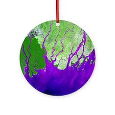 Ganges Delta - Round Ornament