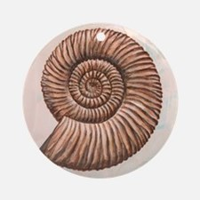 Perisphinctes ammonite, artwork - Round Ornament