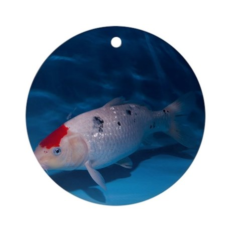 Sanke koi carp pool round ornament by sciencephotos for Koi carp pool design