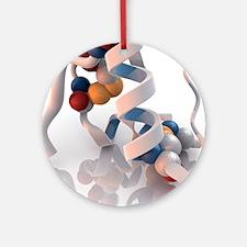 Insulin molecule - Round Ornament