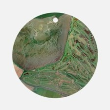 St Andrews golf course, UK - Round Ornament