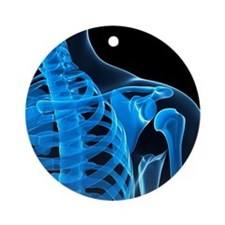 Shoulder bones, artwork - Round Ornament