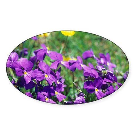 Hairy violet flowers - Sticker (Oval 50 pk)