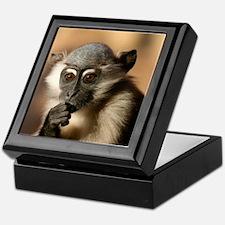 spider monkey Keepsake Box