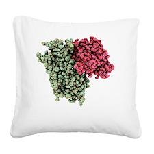 Rhodopsin molecule - Square Canvas Pillow
