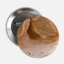 Egg shell membrane, SEM - 2.25' Button (10 pack)