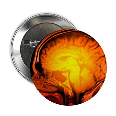 Brain anatomy, MRI scan - 2.25' Button (10 pack)