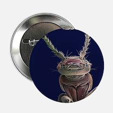 Earwig, SEM - 2.25' Button (10 pack)